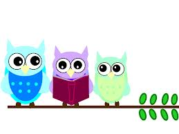 reading owls
